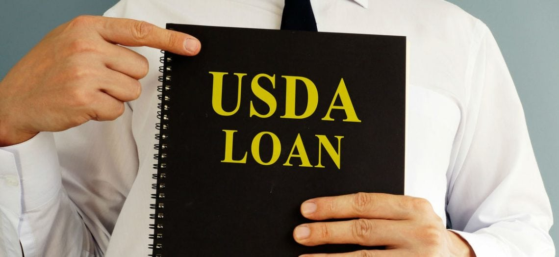 usda business loans