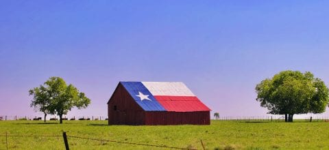 Texas Debt Relief: Your Guide to State Laws and Managing Debt